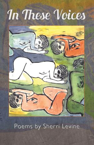 Front Book Cover, In These Voices