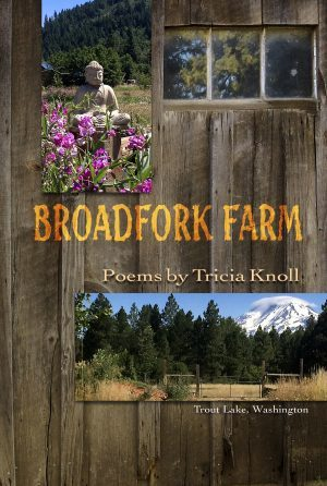 Broadfork Farm by Tricia Knoll - Book Launch