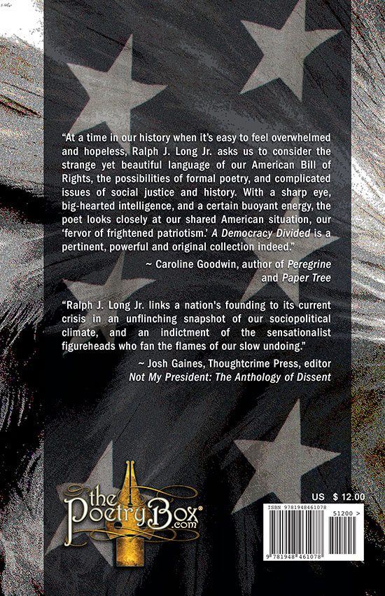 Book Cover (back) A Democracy Divided