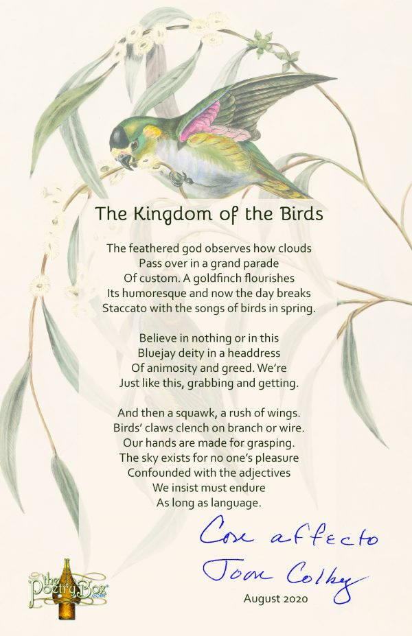 Broadside of title poem of Joan Colby's new poetry book, The Kingdom of Birds