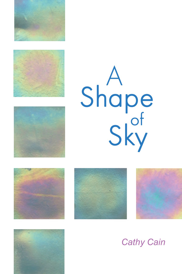 Front cover of A Shape of Sky