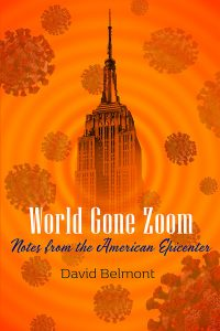 Front Cover of World Gone Zoom