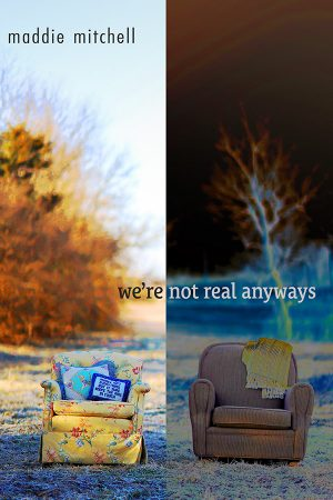 Front Book Cover of we're not real anyways, poems by maddie mitchell