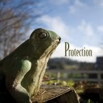 Front Book Cover of Protection by Michelle Lerner (Cover Image by Robert R. Sanders)